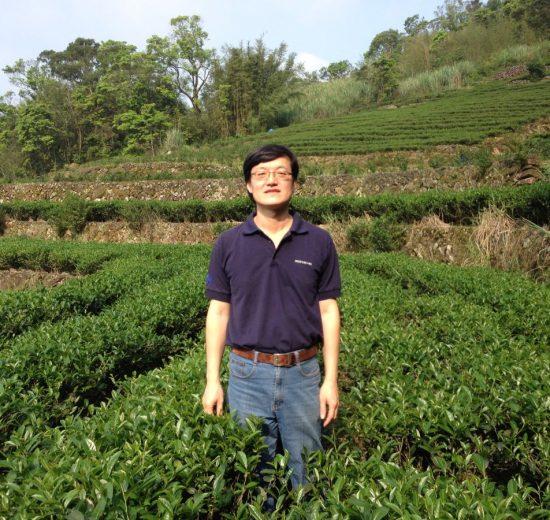 《一起來喝世界茶》